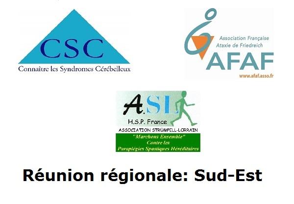 Réunions régionales inter-asso