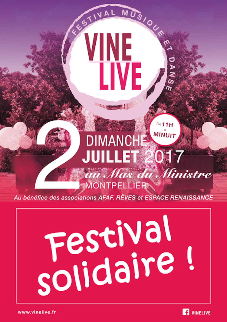 VINELiVE-2017-Buzz-Festival-Solidaire-1497041197